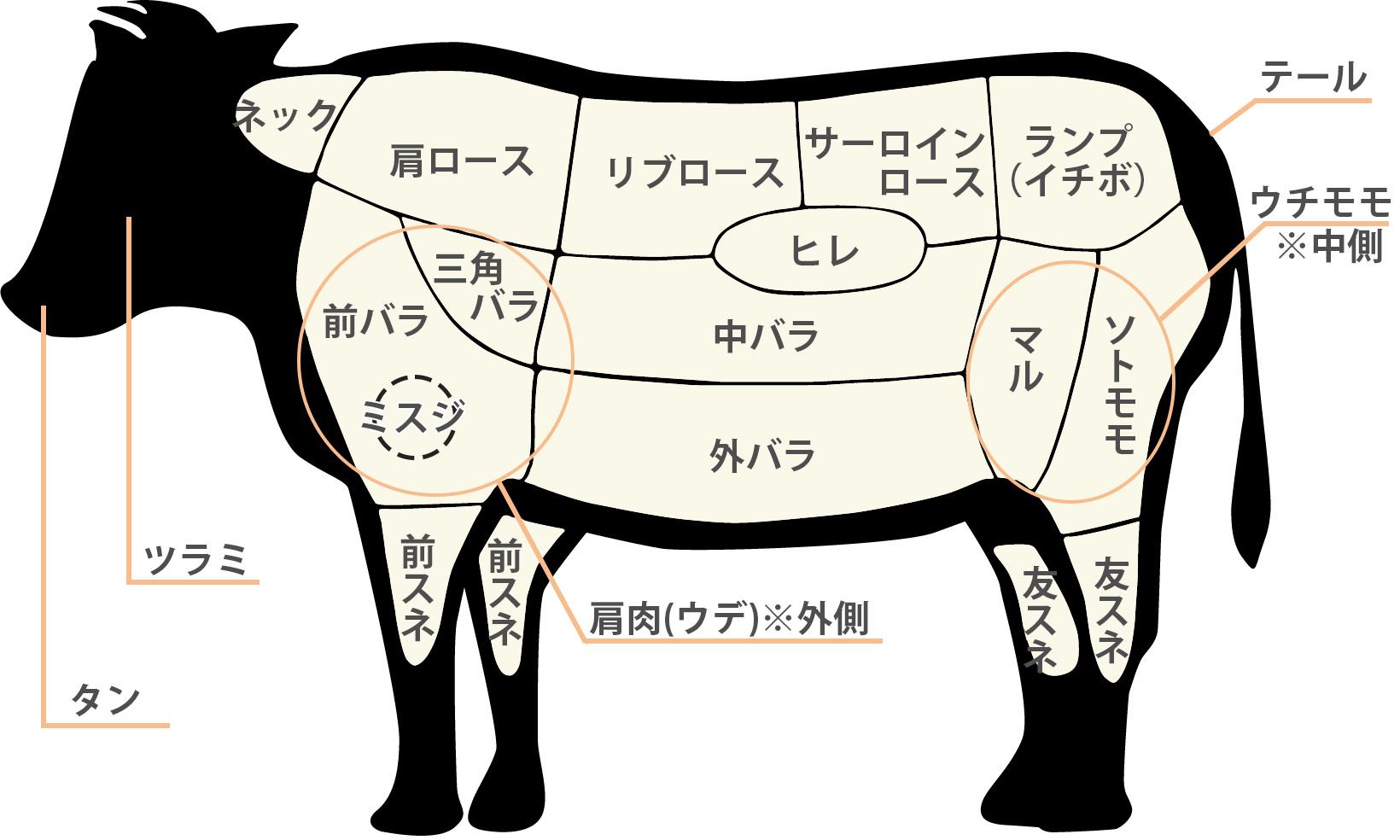 牛肉部位の詳細