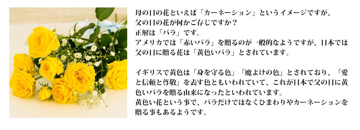 母の日の花といえば「カーネーション」というイメージですが、父の日の花が何かご存じですか?正解は「バラ」です。アメリカでは「赤いバラ」を贈るのが一般的なようですが、日本では父の日に贈る花は「黄色いバラ」とされています。イギリスで黄色は「身を守る色」「魔よけの色」とされており、「愛と信頼と尊敬」を表す色ともいわれていて、これが日本で父の日に黄色いバラを贈る由来になったといわれています。黄色い花という事で、バラだけではなくひまわりやカーネーションを贈る事もあるようです。