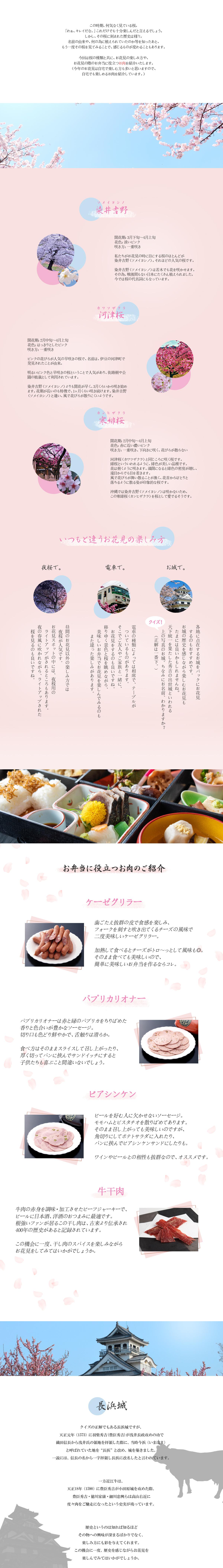 近江牛 桜 花見 ハム ソーセージ