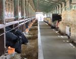 農業生産法人 千成亭ファーム