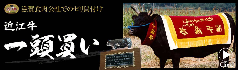 千成亭 近江牛一頭買い