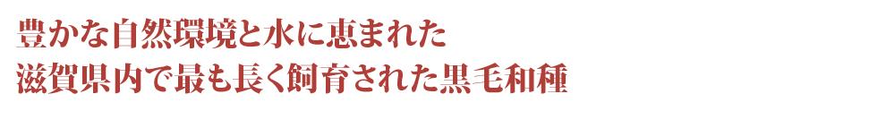豊かな自然環境と水に恵まれた滋賀県内で最も長く飼育された黒毛和種