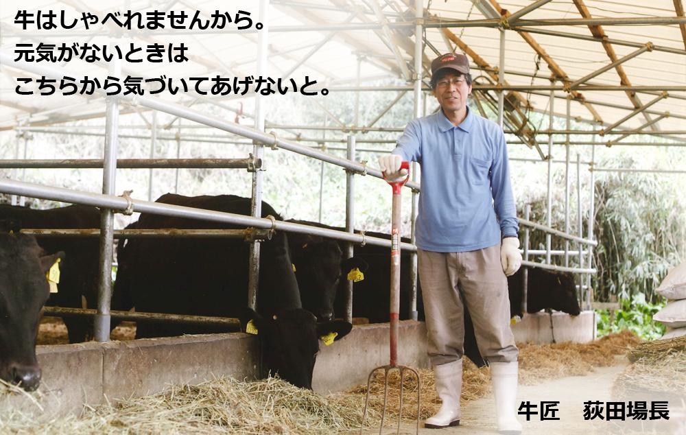 荻田場長は、牛の目を見れば大抵のことは分かるらしい。